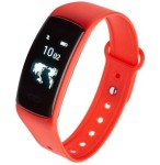 Smartband Garett Fit 13 red